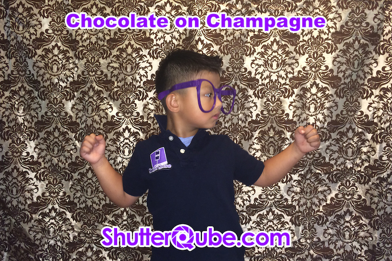 Chocolate on Champagne Damask Backdrop