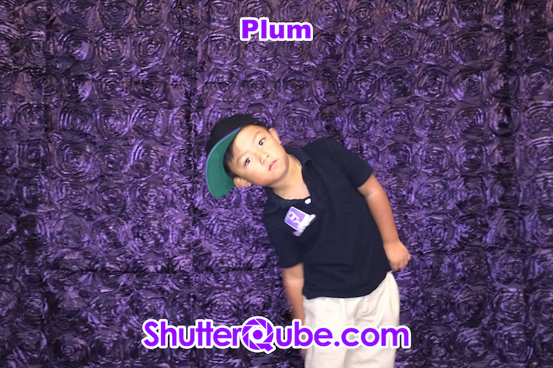 Plum Roses