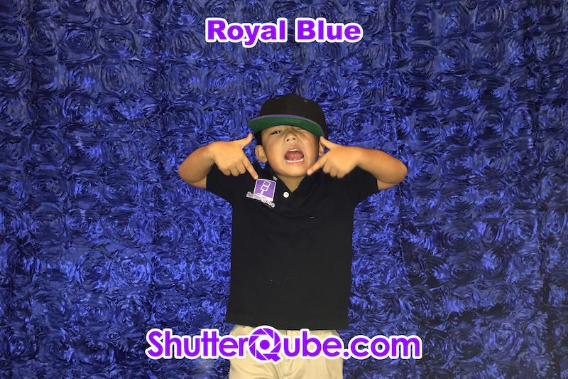 Royal Blue Roses