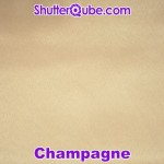 champagne photo booth backdrop