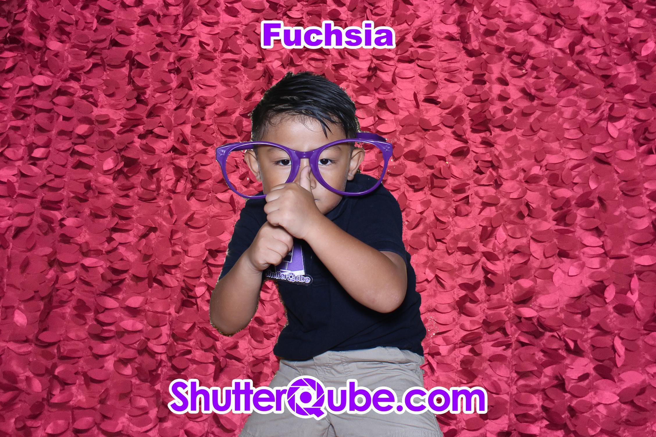 fuchsia leaf photo booth backdrop