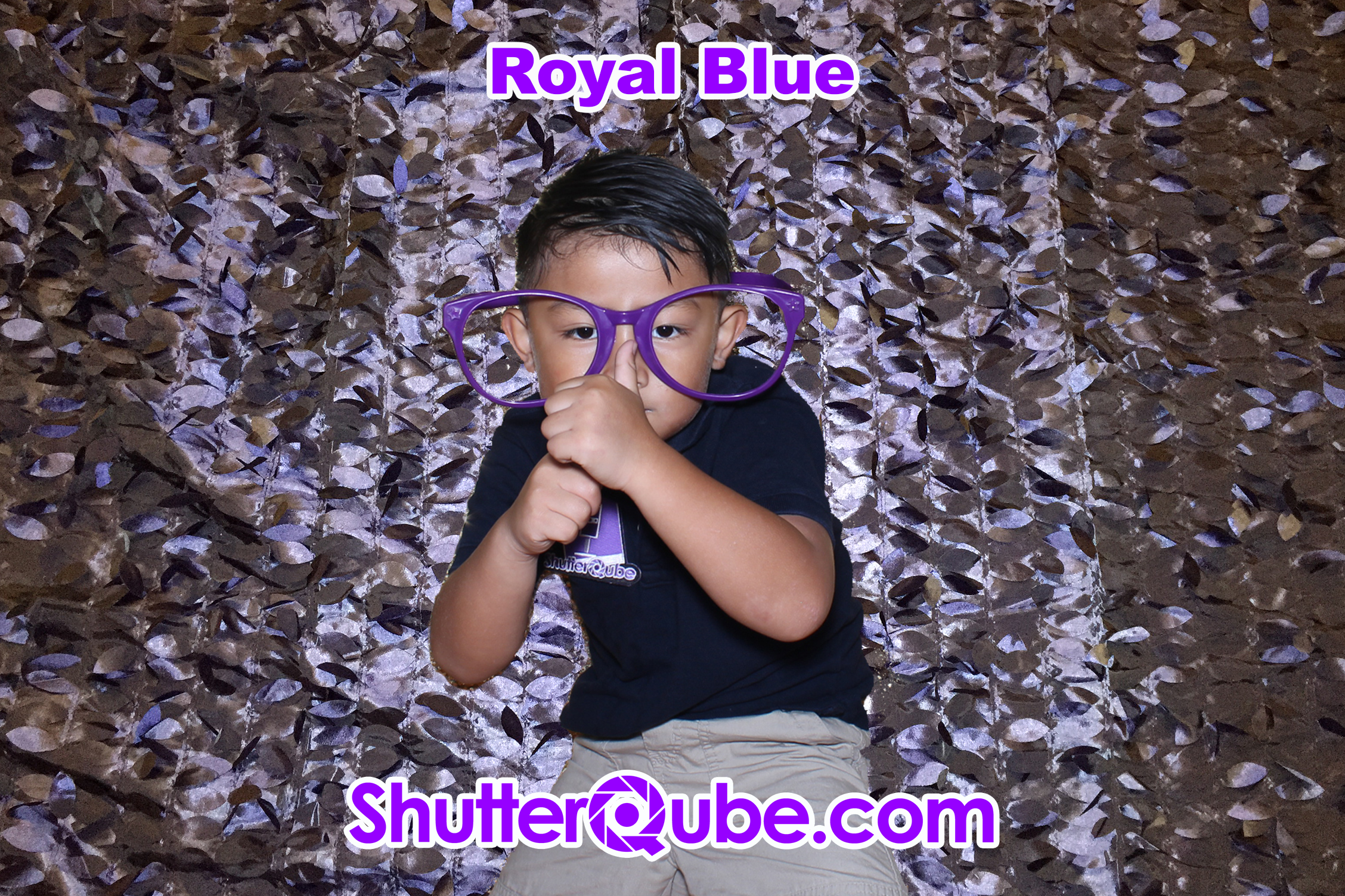 royal blue leaf photo booth backdrop